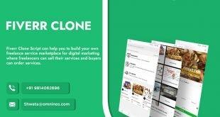 Fiverr Clone App Script Development Company
