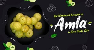 Benefits of Amla in Your Daily Life