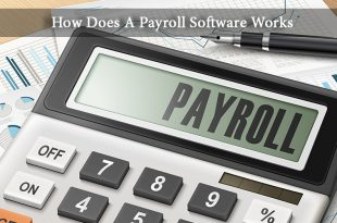 How Does A Payroll Software Works